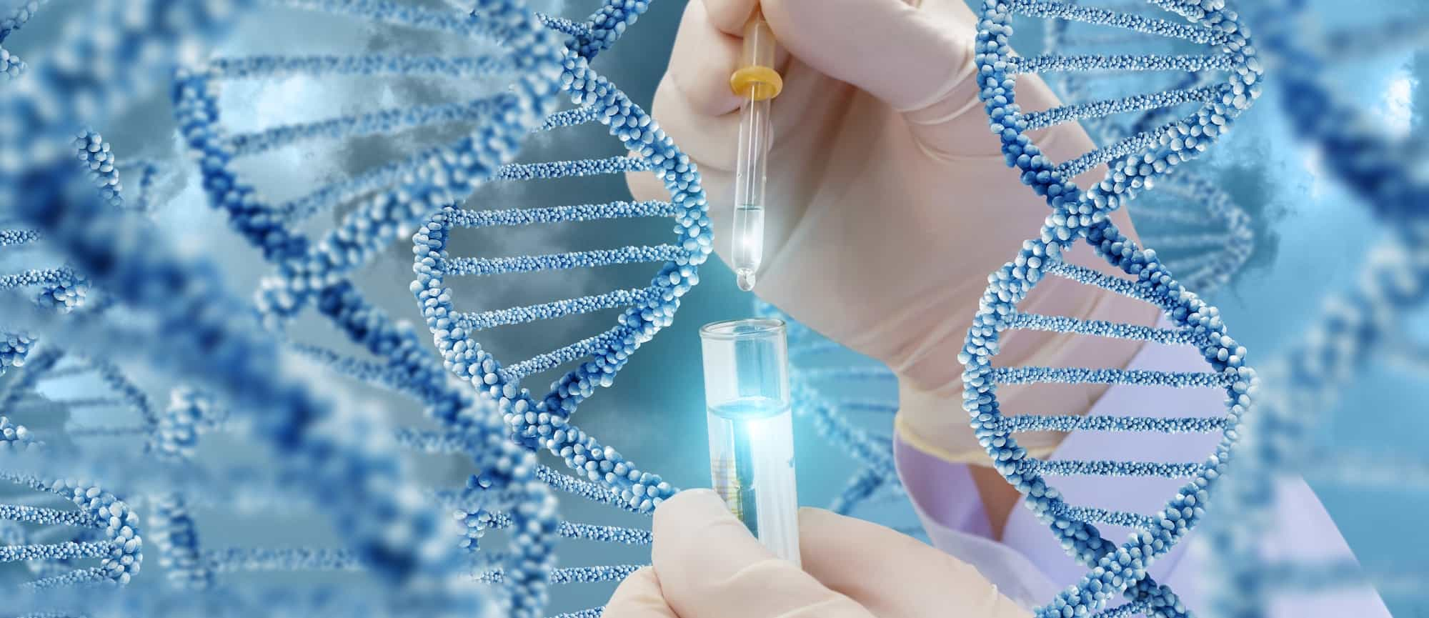 "Book Review ""The Human Genetics and its applications"" By Dr Tammam Al-Ludaimi"