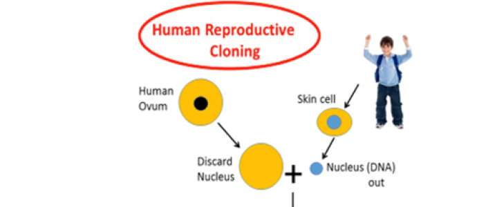 Human Cloning Through Islamic Theology Rebuffing the Absence of God